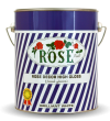 Rose gloss enamel favourite